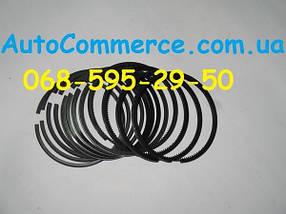 Кольца поршневые (4102QBZ) Dong Feng 1044 Донг Фенг Богдан DF30, фото 2