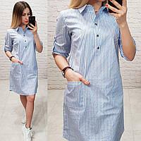 Платье-рубашка, модель 831, цвет - голубой в полоску