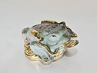 Лягушка на монетах - символ богатства и материального благополучия