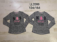 Регланы для девочек оптом, размеры 134-164, Sincere, арт. LL 2099, фото 1