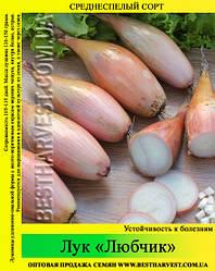 Семена лука «Любчик» 10 кг (мешок)