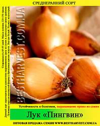 Семена лука «Пингвин» 10 кг (мешок)