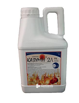 Фунгицид Казумин 2Л (Саммит Агро) - 5 л, фото 2