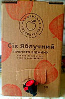 Натуральний яблучний сік 5 л