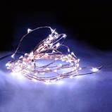 LED Гірлянда Роса 10 метрів (різні кольори), фото 10