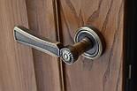 Двері з феленкой з масиву ясена та фігурним лиштвою, фото 2
