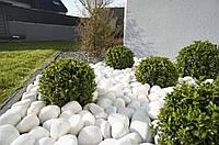 Белоснежный камень мраморная галька из Греции