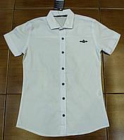Стильна сорочка для хлопчика на ріст 134-170 см