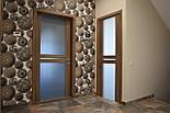 Межкомнатные двери стеклянные, фото 3