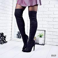 Сапоги женские ботфорты Stella черные Деми  8169