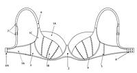 Конструкция и элементы бюстгальтера