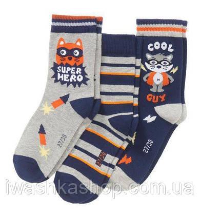 Комплект трикотажных носков органический хлопок на мальчика р. 35 - 38, KIK