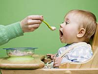 Когда вводить прикорм и с чего начать?