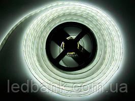 Светодиодная лента SMD 3014 240 LED/m IP20 White Самая Яркая