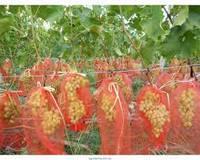 Мешки(сетки) для защиты винограда