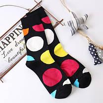 Мужские носки в большой  горох Friendly Socks, фото 2