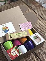 Подарочный набор с растущими карандашами 6шт +Live  куб+ растущая открытка+подставка подарок