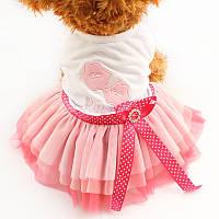 Платье для собак «Кисс»