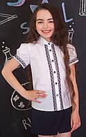 Блузка Свит блуз мод. 7088к р.152