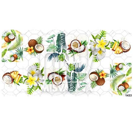 Слайдер дизайн на водной основе №1433 кокосы, фото 2