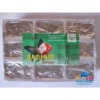 Дафния мороженная, блистер (100 гр.)
