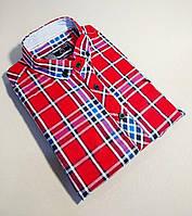 Мужская рубашка с коротким рукавом в клетку красная