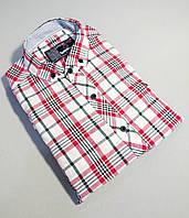 Мужская рубашка с коротким рукавом в клетку белая в красную клетку