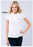 LACOSTE жіноча футболка лакоста поло лакосте лакост, фото 4