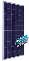 Солнечная батарея LDK 255 PAFW