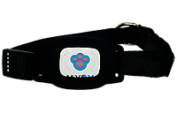 Ошейник GPS для собак MYOX MPT-03DB Black