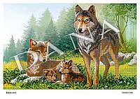 """""""Волчья семья"""""""