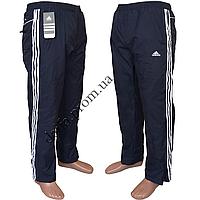 Мужские спортивные штаны (плащевка) НОРМА P55k оптом со склада в Одессе