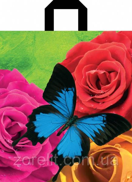 Пакет петля 30*35 Бабочка