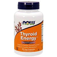 Активное долголетие NOW Thyroid Energy (90 капс)