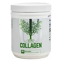 Препарат для восстановления суставов и связок Universal Collagen (300 г)