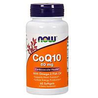 Антиоксидант для поддержки сердечно-сосудистой системы Now Foods CoQ10 with Omega 3 60 мг (120 желевых капсул)