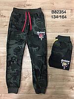 Спортивные штаны  для мальчиков оптом ,Grace, 134-164 рр., арт. 82354, фото 1