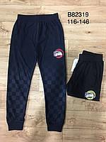 Спортивные штаны на мальчика оптом, Grace, 116-146 см,  № B82319