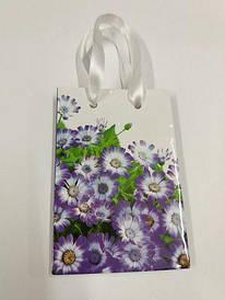 Пакет бумажный подарочный  МИНИ 8*12*3.5 арт46 (12 шт)