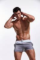 Короткие мужские пляжные шорты AQUX L