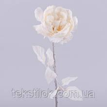 Роза английская новогодняя молочная  Новогодний декор