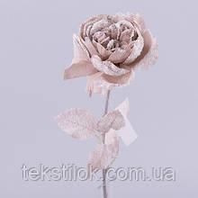 Роза английская новогодняя сливовая  Новогодний декор