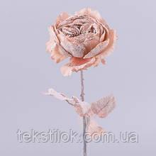 Роза английская новогодняя телесная  Новогодний декор