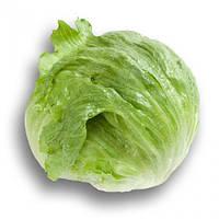 Семена раннего зеленого кочанного салата Солейсон, профупаковка 5 г, Hazera, Качественные семена овощей