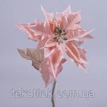 Пуансетия пудровая 33 см Новогодний декор