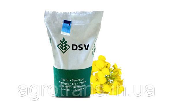 Семена рапса, Смарагд, DSV