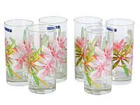 Набор стаканов Luminarc Aime Freesia 270 мл 6 шт G8280