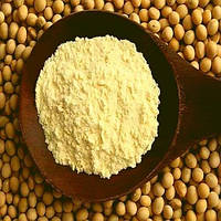 Соевый протеиновый концентрат 60%