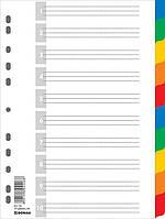 Разделители 10 позиций, с листом описания, А4, 10шт., 10 цветов, пластик, Donau