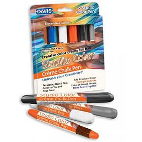 Фарбувальні крейда для вовни, волосся, шкіри Davis Essential Colors